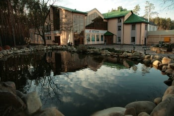 Центр онкологии и радиохирургии «Кибер Клиника Спиженко»
