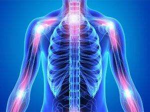 МРТ скелетно-мышечной системы и суставов