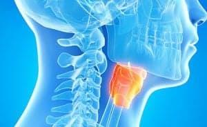 Компьютерная томография горла и лор-органов (КТ горла, ЛОР)